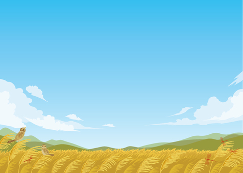 Japanese pampas grass background illustration
