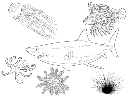 [Monochrome] Sea life