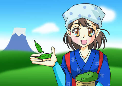 Tea picking background