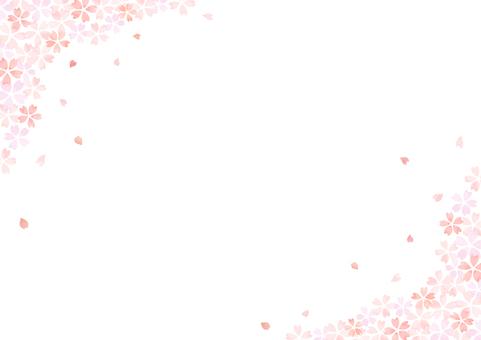 Sakura background 14