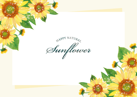 Summer background frame 088 sunflower watercolor