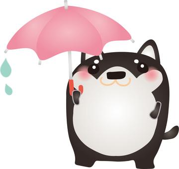 Black Chai umbrella