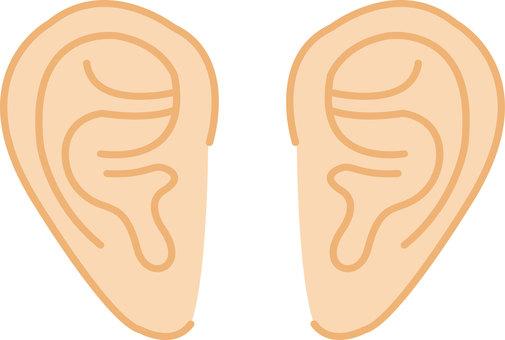 Human ear ①