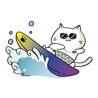 Surfing cat ②
