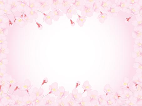Cherry tree _ greeting card