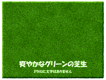 Lawn texture green real