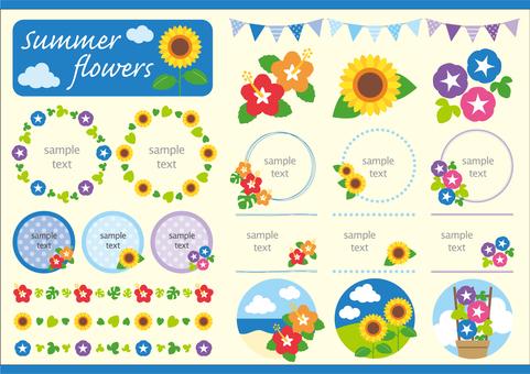 夏の花 セット