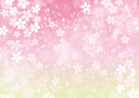 벚꽃 배경 전면