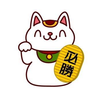 Winning cat