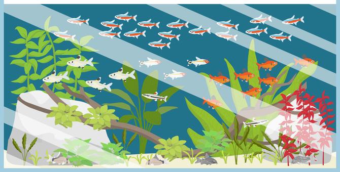 Kalasin Aquatic Aquarium