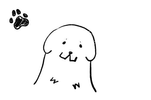 Pyrenees dog 1