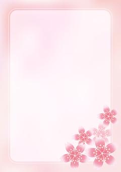 Sakura Sakura & Board 16