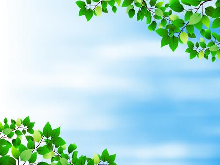 나뭇잎 프레임 파란색 배경