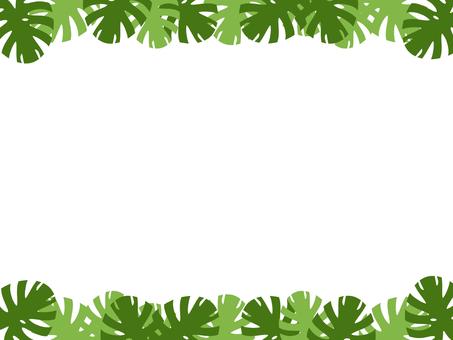 Monstera frame green