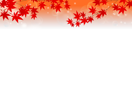Autumn leaves background 2
