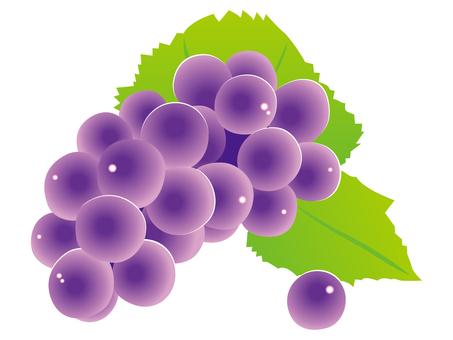 Z009_ grapes