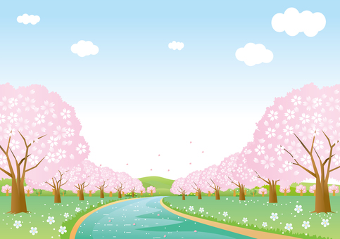 Scenery of cherry blossoms and spring stream