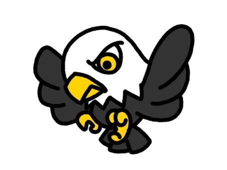 독수리 흑백