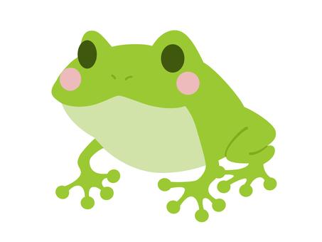 Frog illustrations material