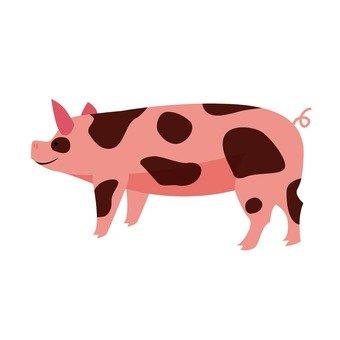 Livestock 009