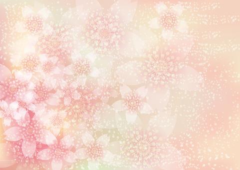 벚꽃의 꽃 157