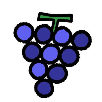 葡萄2深蓝色×紫色