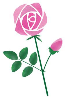 Roses single ring pink