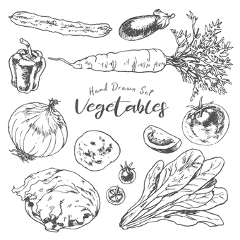 Vegetable hand-painted illustration