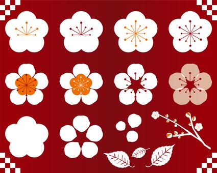 梅の花セット