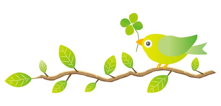 鳥和四葉草