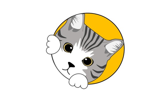Peeping cat gray