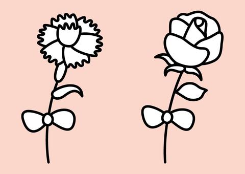 카네이션 장미
