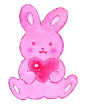 Heart and rabbit