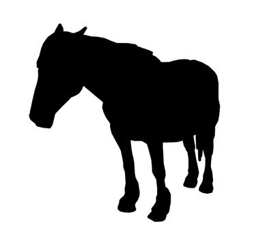 Horse silhouette 1