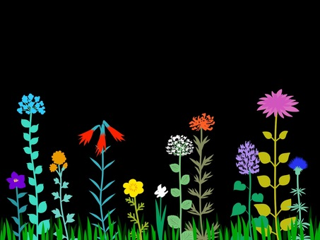 Flower meadow black background colorful