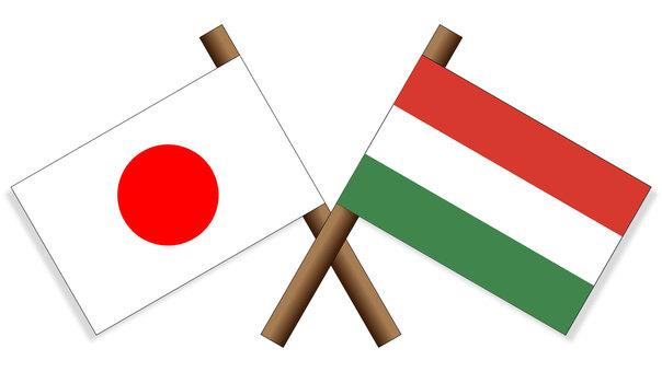Flag Japan × Hungary