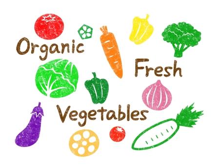 Vegetable illustration Hanko style