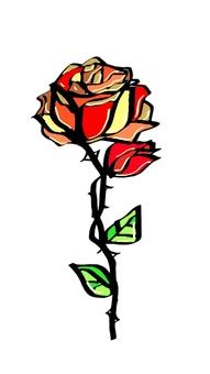 Rose material