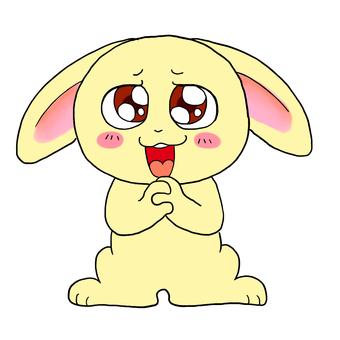 A crush rabbit