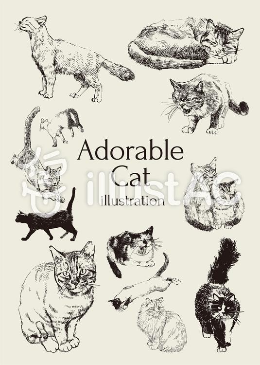 かわいい猫イラストイラスト , No 785387/無料イラストなら