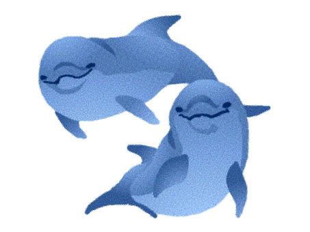 Dolphin 9 * Blue