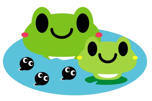 Frog & Tadpole