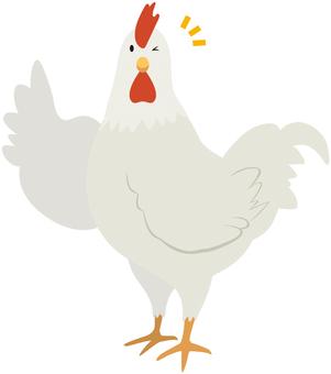 Wink chicken