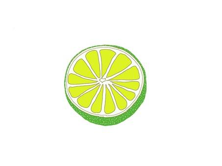 Citrus ②