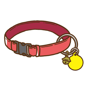 Cat's safety buckle collar