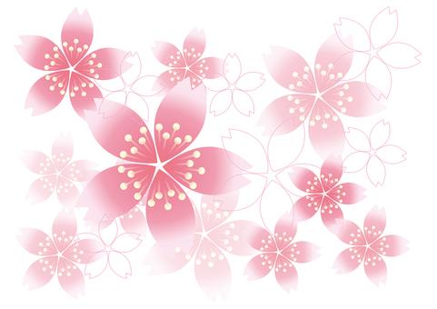 Sakura no Hana 10