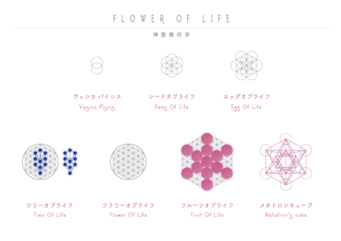 Flower of Life [Sacred Geometry]