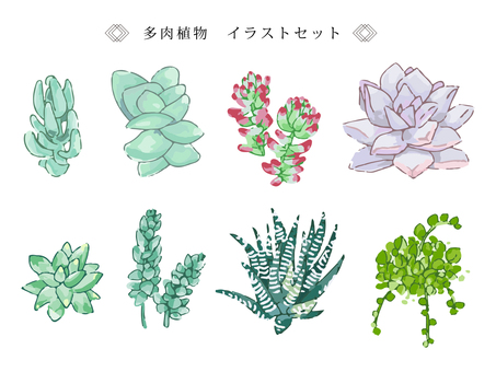 Illustration set of succulents