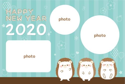 연하장 2020 고슴도치 · 사진 프레임
