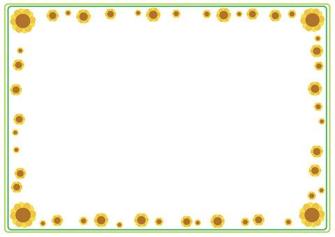 A lot of Sunflower frame